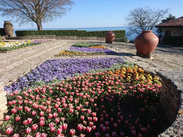 ботаническата градина балчик